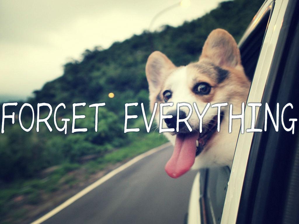 全部忘れよう